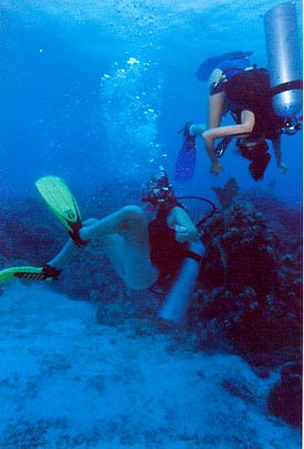 Teen students having fun on their dive