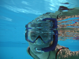 learn to snorkel in Key Largo pool