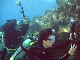two underwater photographers working hard in Key Largo pool